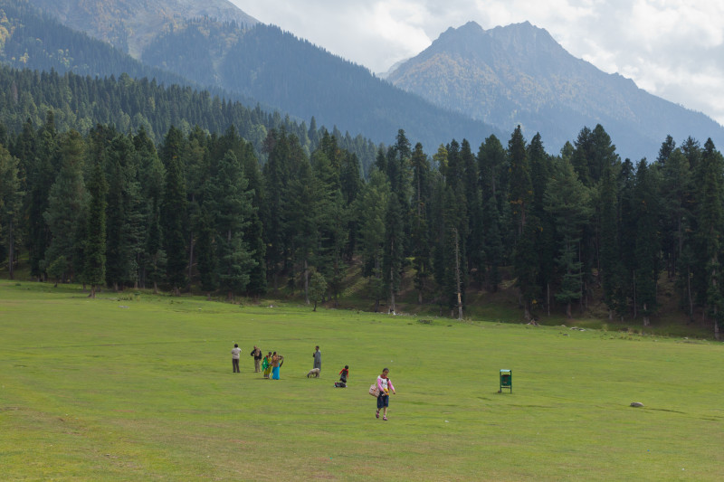 Tourists thronging meadows in Pahalgam